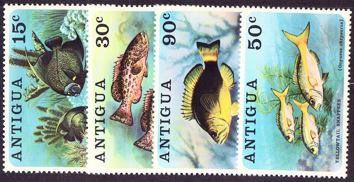 Antigua Scott 2444-447, MNH, Fish, complete set of 4